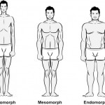 Body Types – Endomorph, Mesomorph, Ectomorph